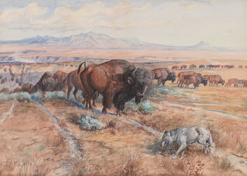 Guardian of the Herd (Nature's Cattle; Buffalo Herd; Before the White Man Came)