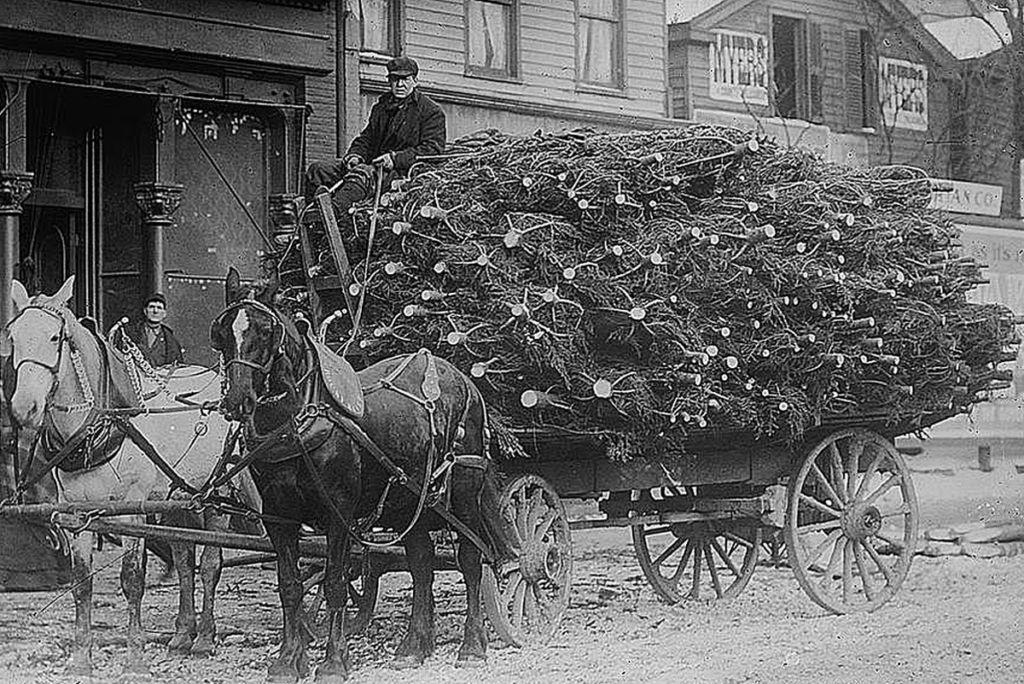 Christmas Tree Delivery Wagon